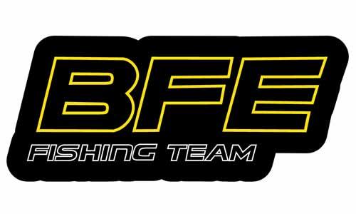 BFE Logo als Aufkleber