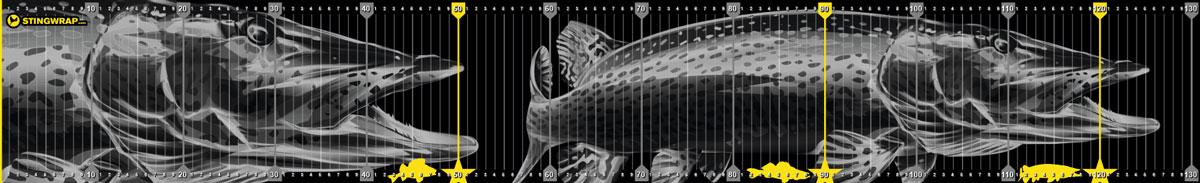 Fischmaßband mit Hecht